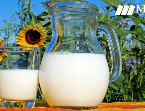 Leche de vaca Vs. leche vegetal ¿Cuál es mejor?