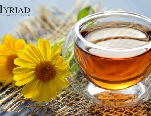 Miel de abeja: 10 beneficios y propiedades de este alimento
