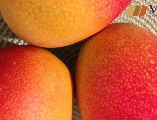 10 beneficios que obtienes del mango